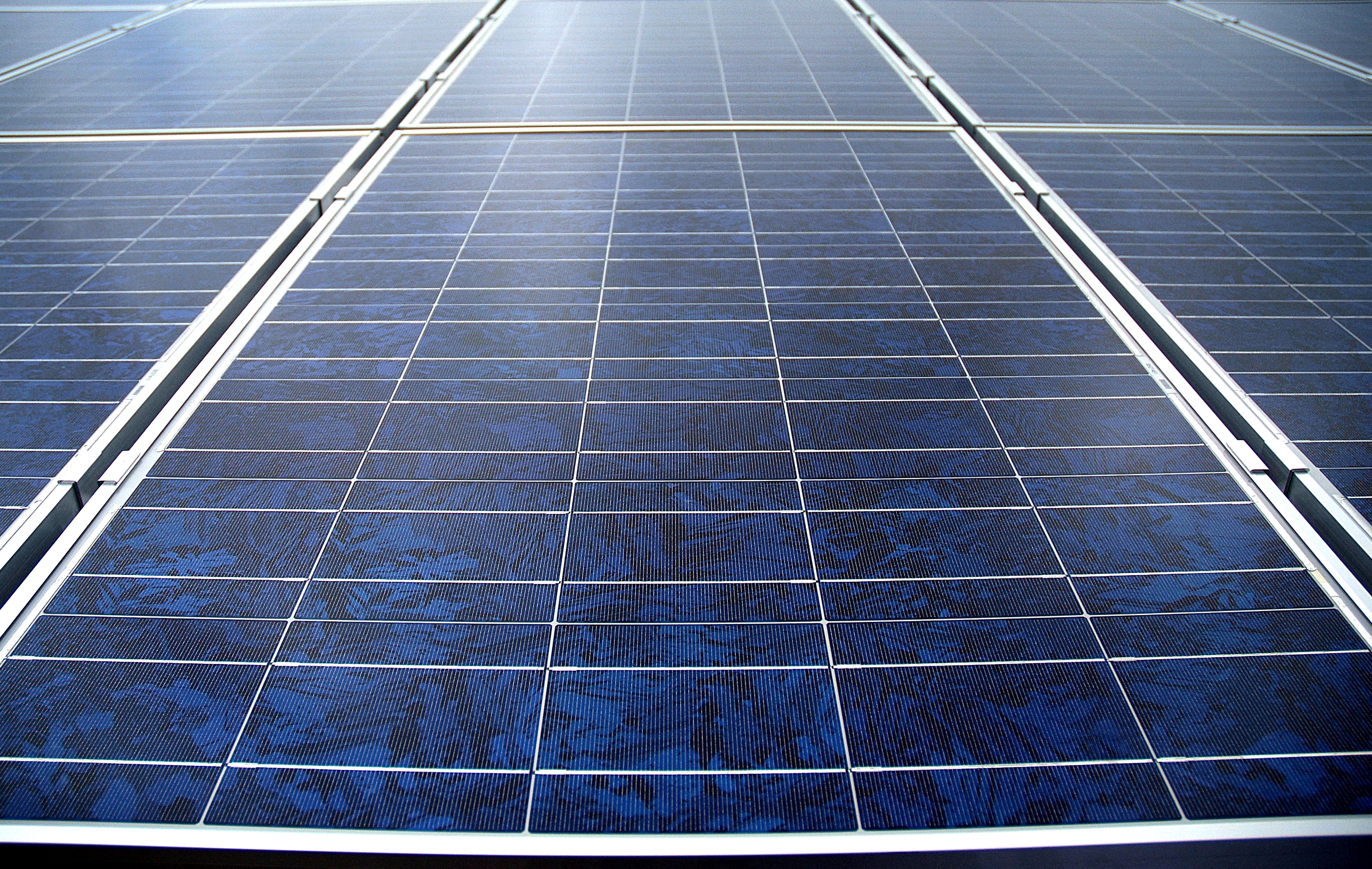 pv auctions  competition  critics warn  target
