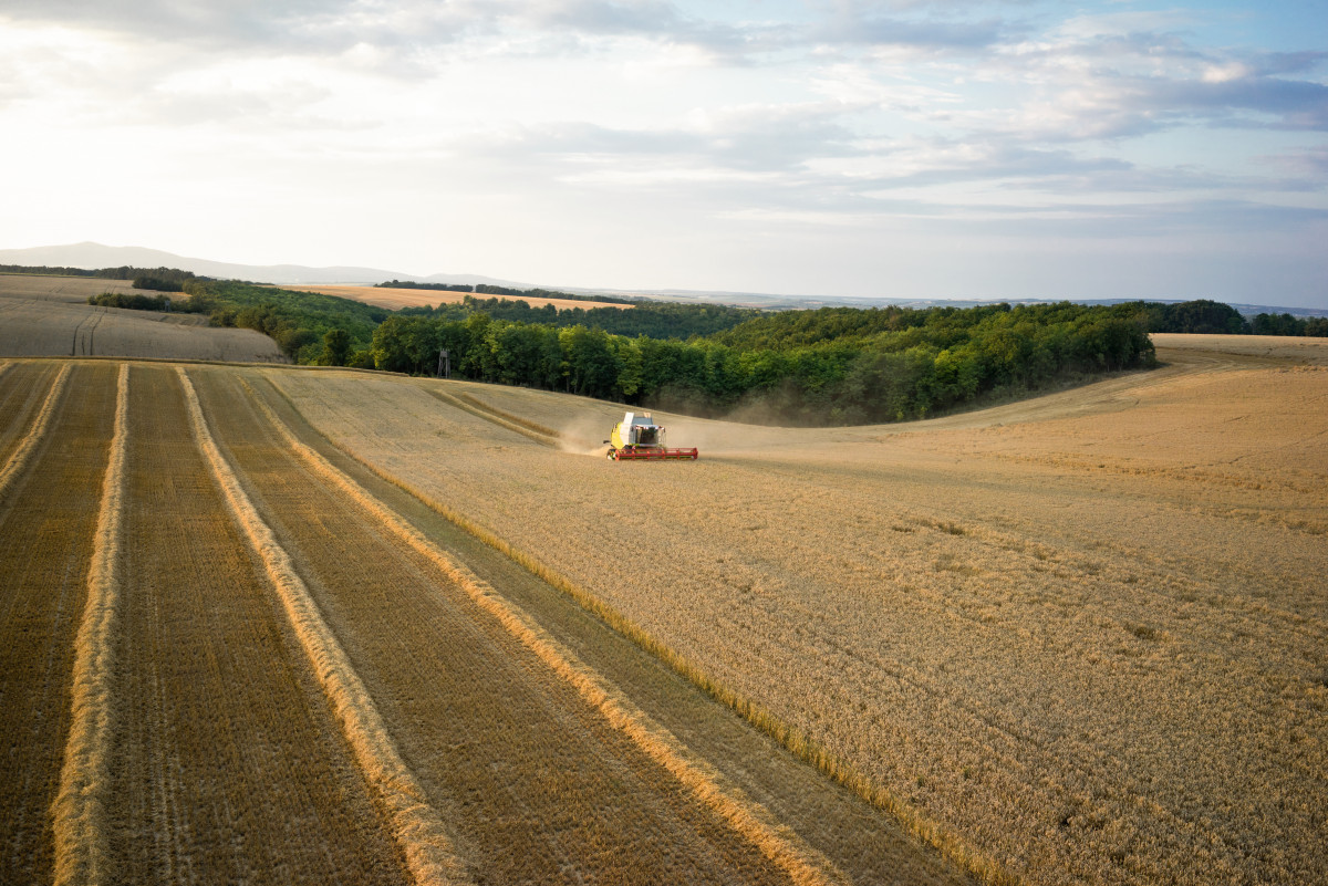 Photo shows field and farming machine. Source: Claas KGaA mbH.