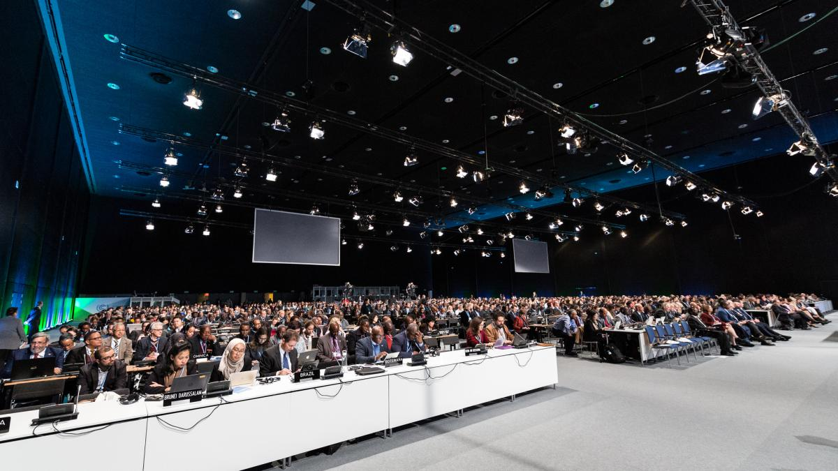 Representatives from all countries are meeting in Katowice to further international climate action - but recent survey showed that a majority of Germans (85%) doesn't believe that this format will be able to resolve global warming. Photo:  UNFCC.