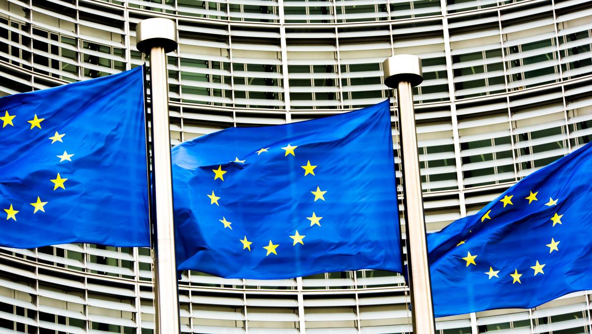 Photo shows EU flags. Source: European Union.
