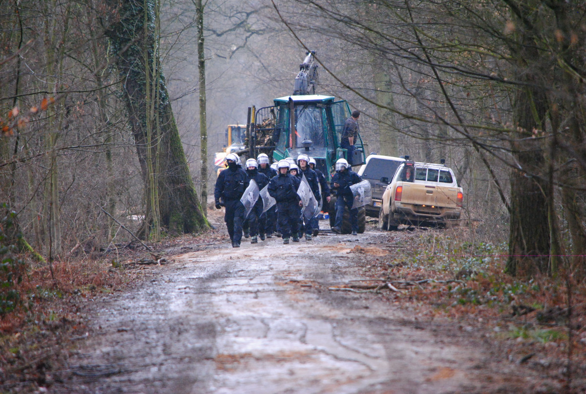 Police enter the Hambach Forest in 2017. Photo: hambacherforst.org