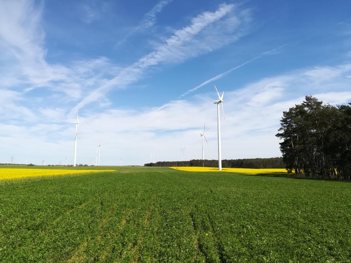 Photo shows wind turbines in Brandenburg, Germany. Source: CLEW/Wettengel.