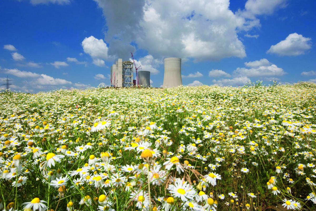RWE's Neurath coal power plant, a major source of carbon emissions. Photo: RWE