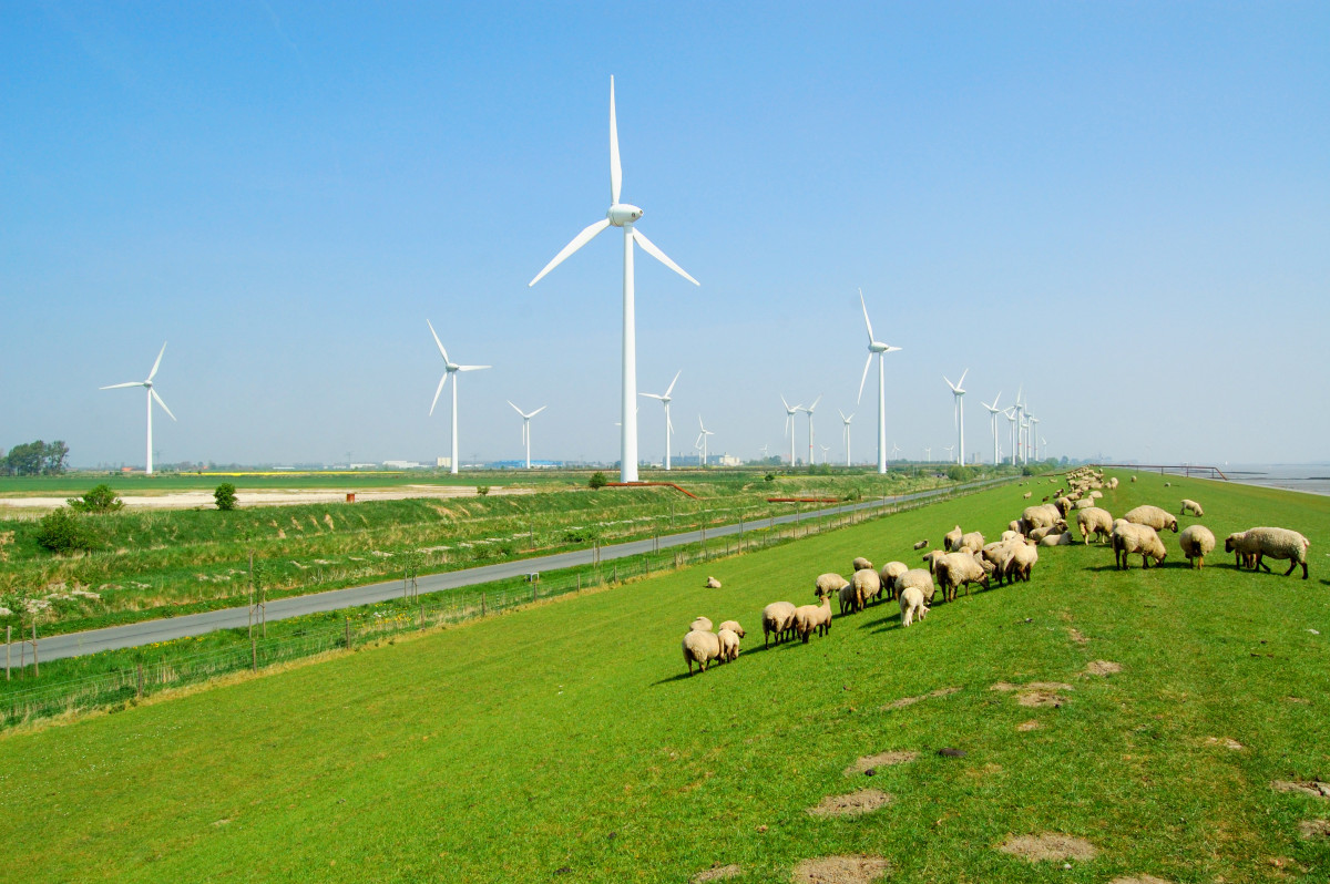 Picture shows a dike in East Frisia with windmills in the background.
