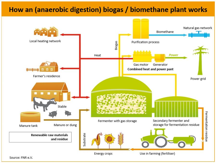 Bioenergy In Germany Clean Energy Wire