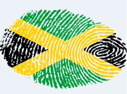 A Jamaica coalition's party colours black (CDU/CSU), yellow (FDP), and green (Greens) mirror the Caribbean country's flag. Source: Pixabay.