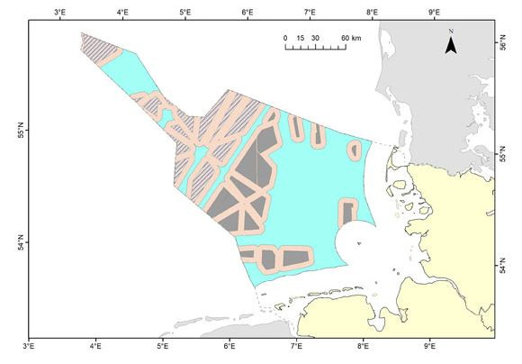 Total area needed for 40-50 GW offshore wind capacity in German North Sea; red area indicating habitat loss for sea bird species. Source: NABU